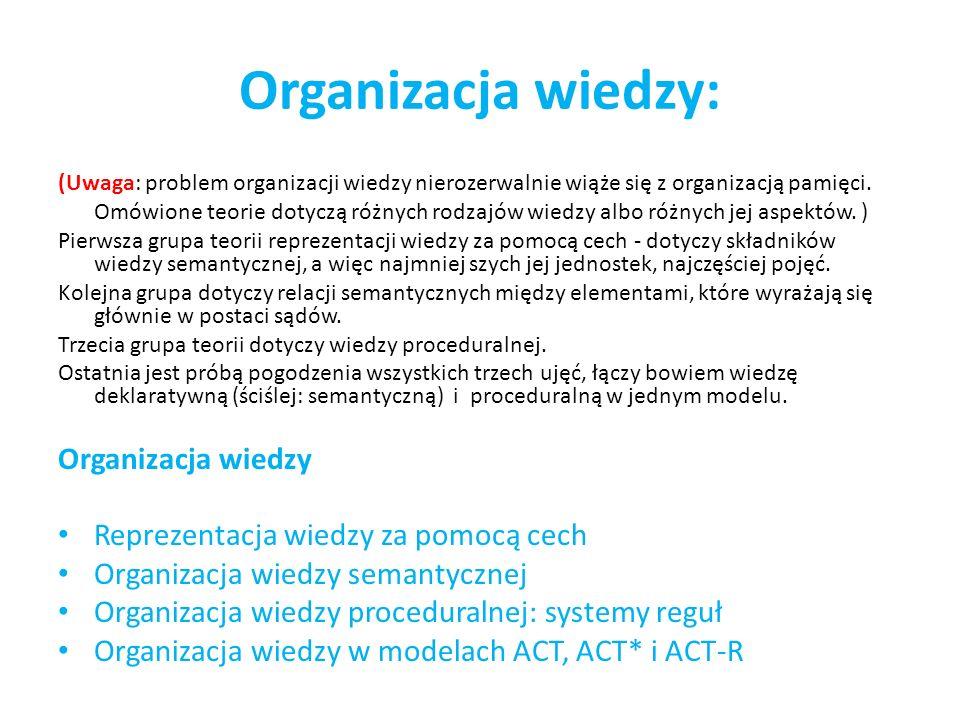 Organizacja wiedzy: Organizacja wiedzy