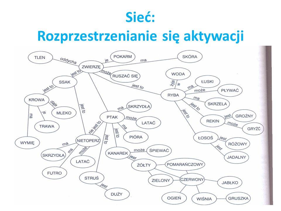 Sieć: Rozprzestrzenianie się aktywacji