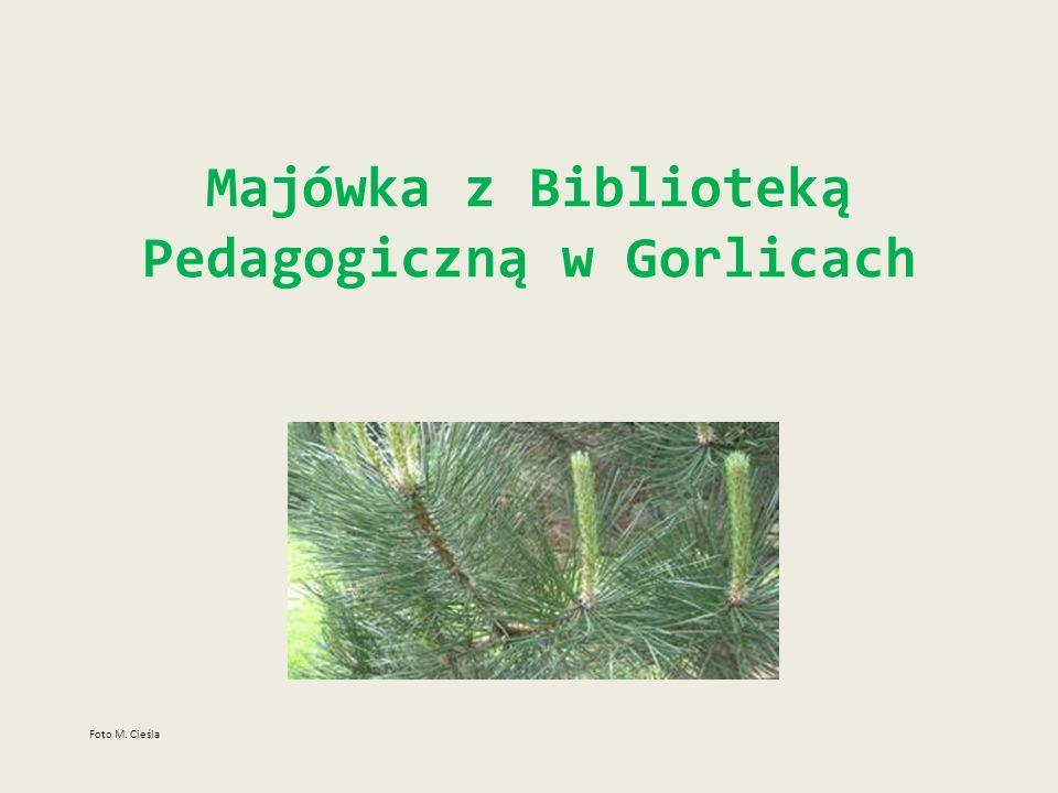Majówka z Biblioteką Pedagogiczną w Gorlicach
