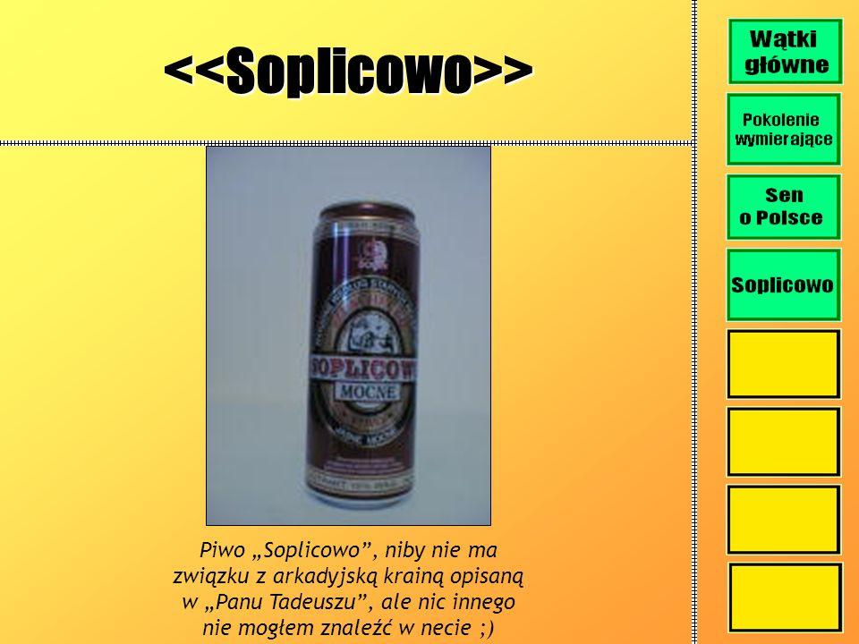 <<Soplicowo>>