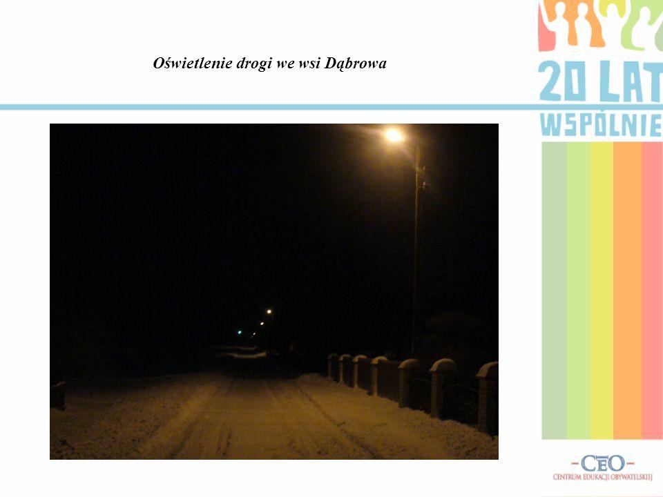 Oświetlenie drogi we wsi Dąbrowa