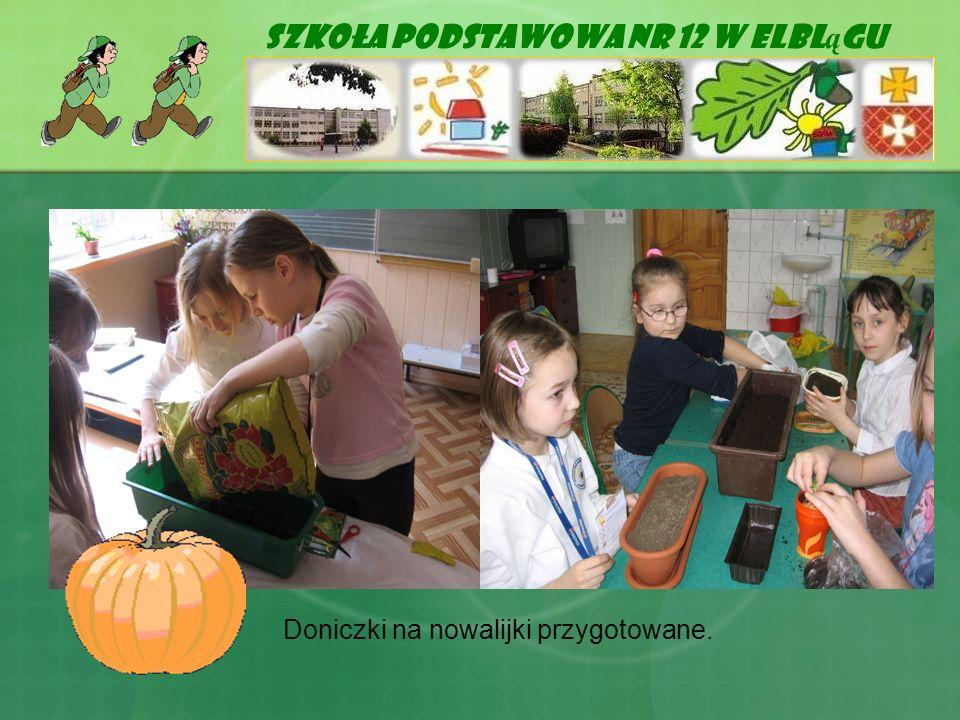Szkoła Podstawowa Nr 12 w Elblągu