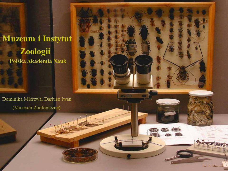 Muzeum i Instytut Zoologii Polska Akademia Nauk