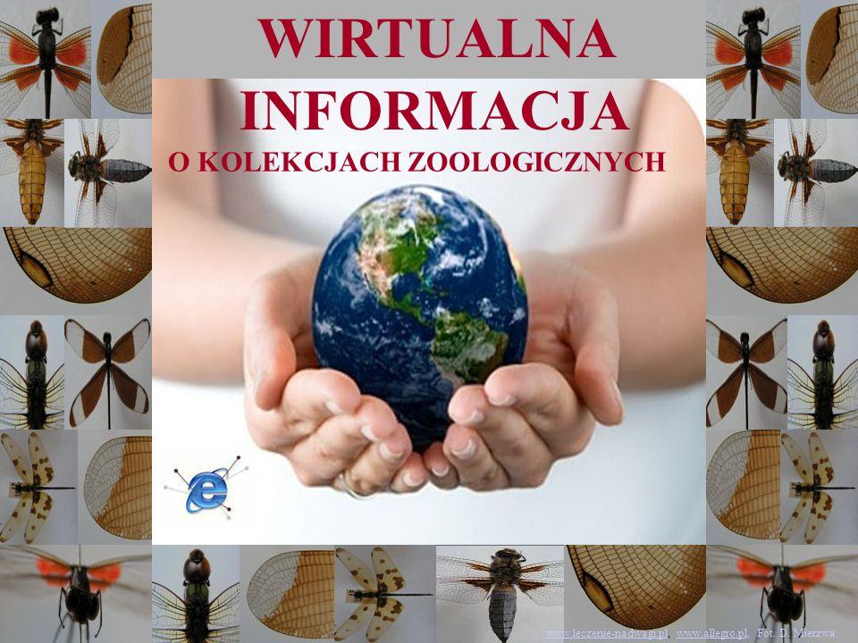 www.leczenie-nadwagi.pl, www.allegro.pl, Fot. D. Mierzwa