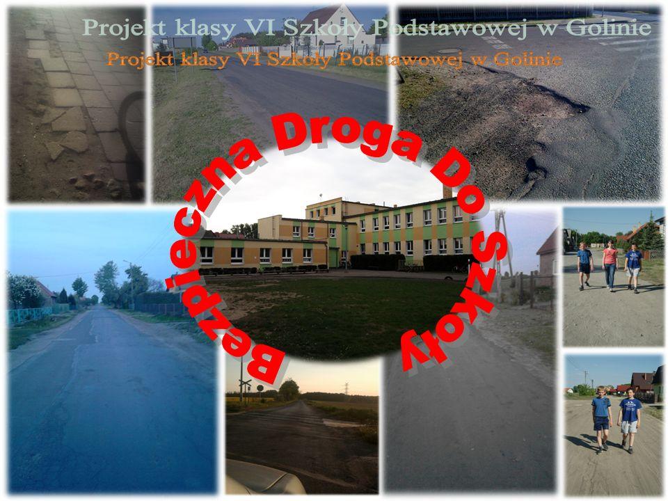 Projekt klasy VI Szkoły Podstawowej w Golinie