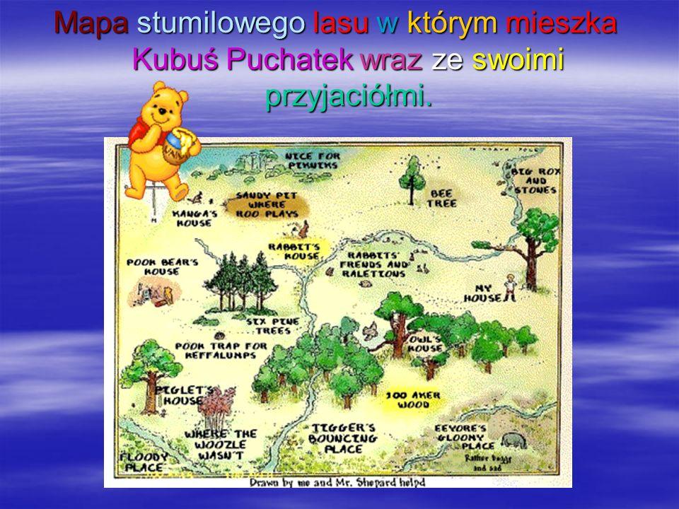 Mapa stumilowego lasu w którym mieszka Kubuś Puchatek wraz ze swoimi przyjaciółmi.
