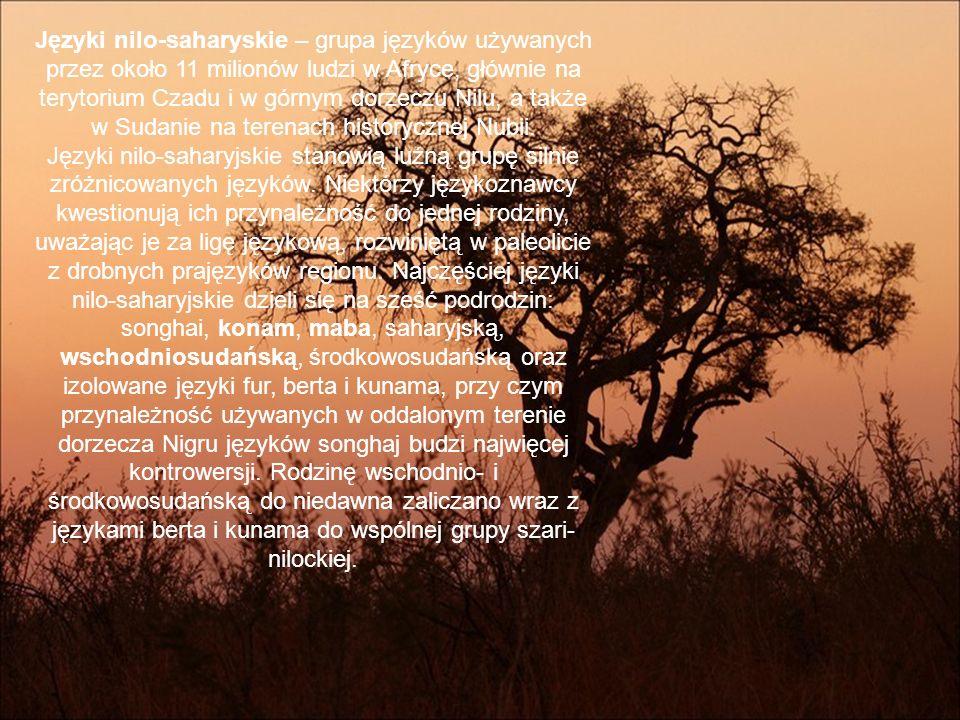 Języki nilo-saharyskie – grupa języków używanych przez około 11 milionów ludzi w Afryce, głównie na terytorium Czadu i w górnym dorzeczu Nilu, a także w Sudanie na terenach historycznej Nubii.
