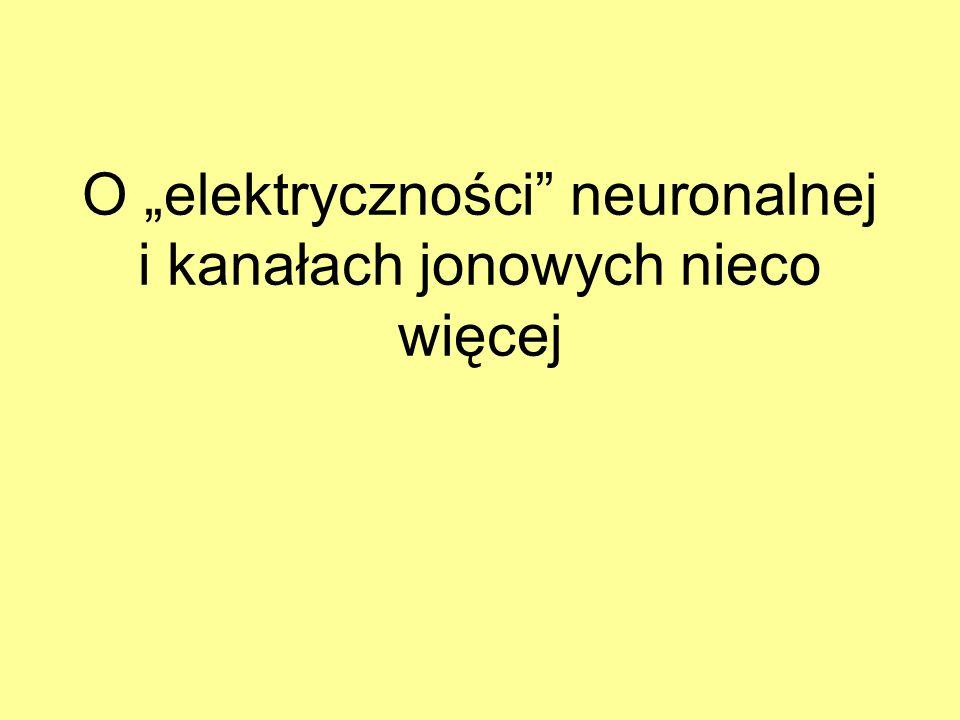 """O """"elektryczności neuronalnej i kanałach jonowych nieco więcej"""
