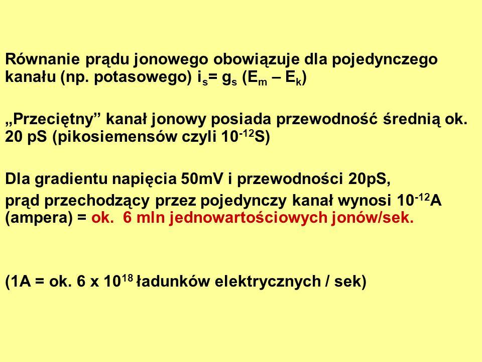 Równanie prądu jonowego obowiązuje dla pojedynczego kanału (np