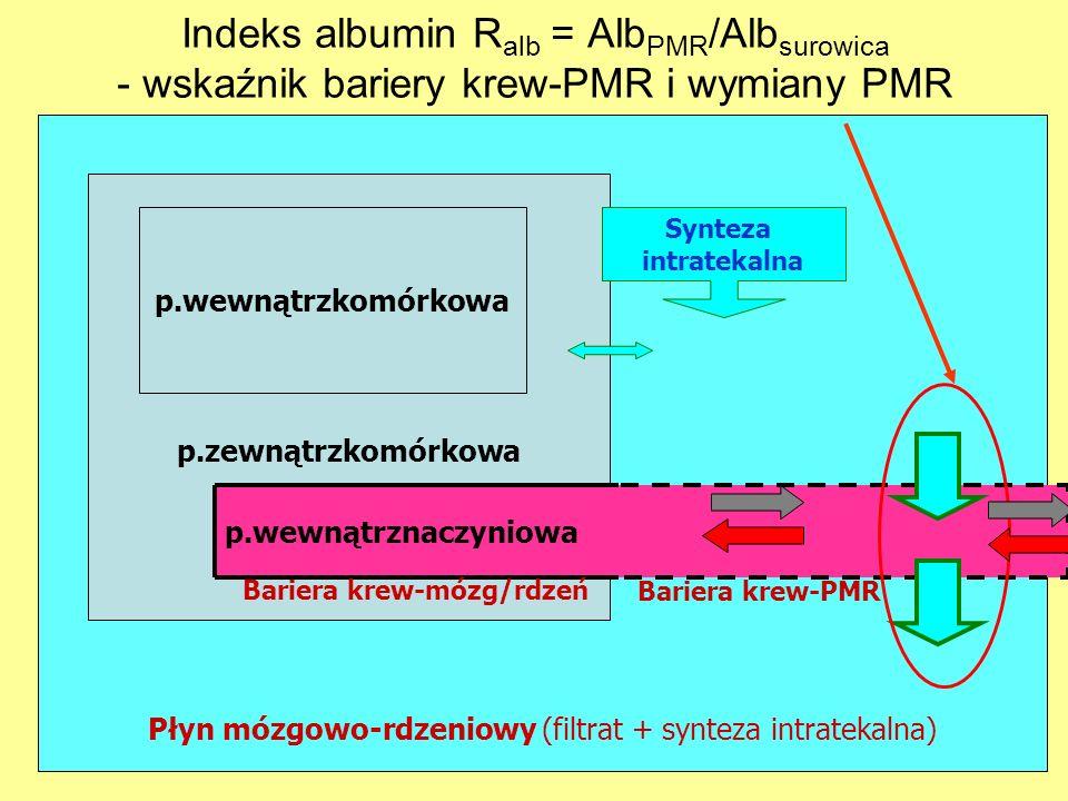 Płyn mózgowo-rdzeniowy (filtrat + synteza intratekalna)