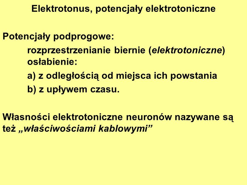 Elektrotonus, potencjały elektrotoniczne