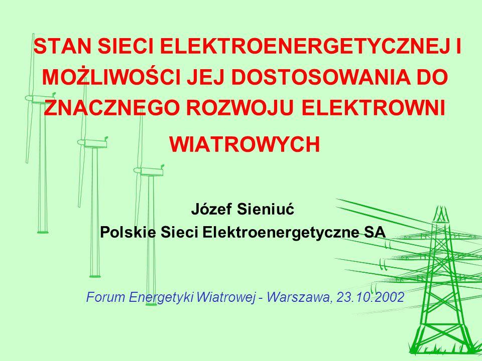 Polskie Sieci Elektroenergetyczne SA