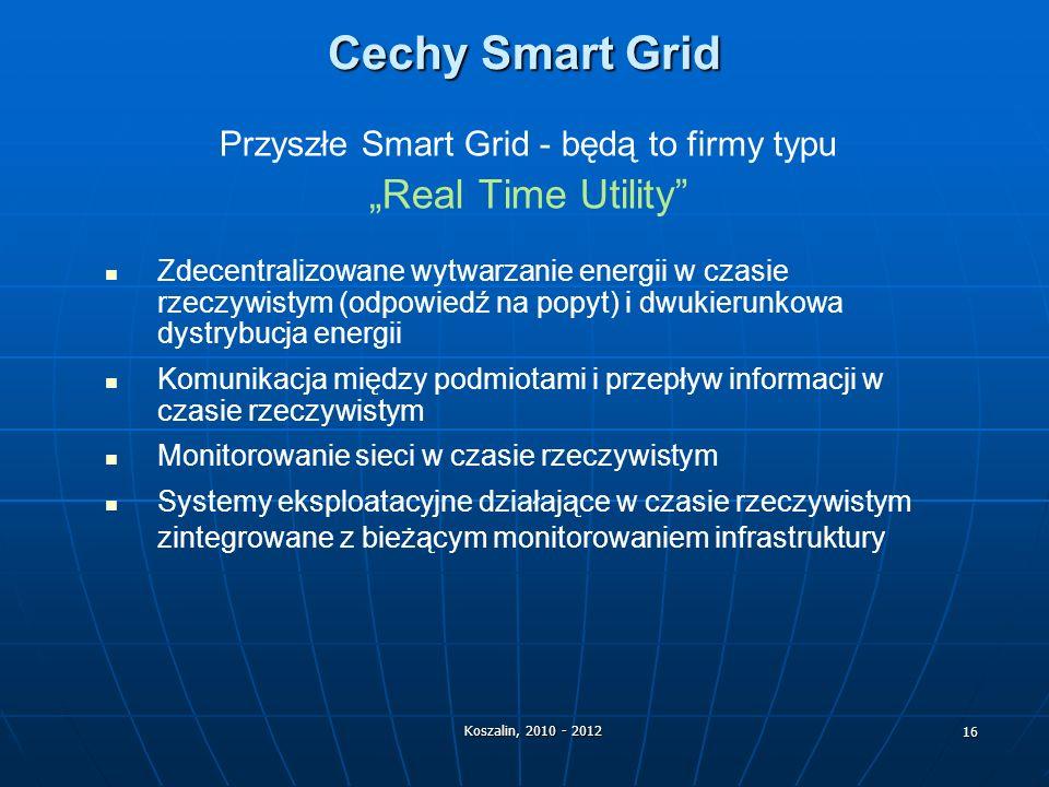 Przyszłe Smart Grid - będą to firmy typu