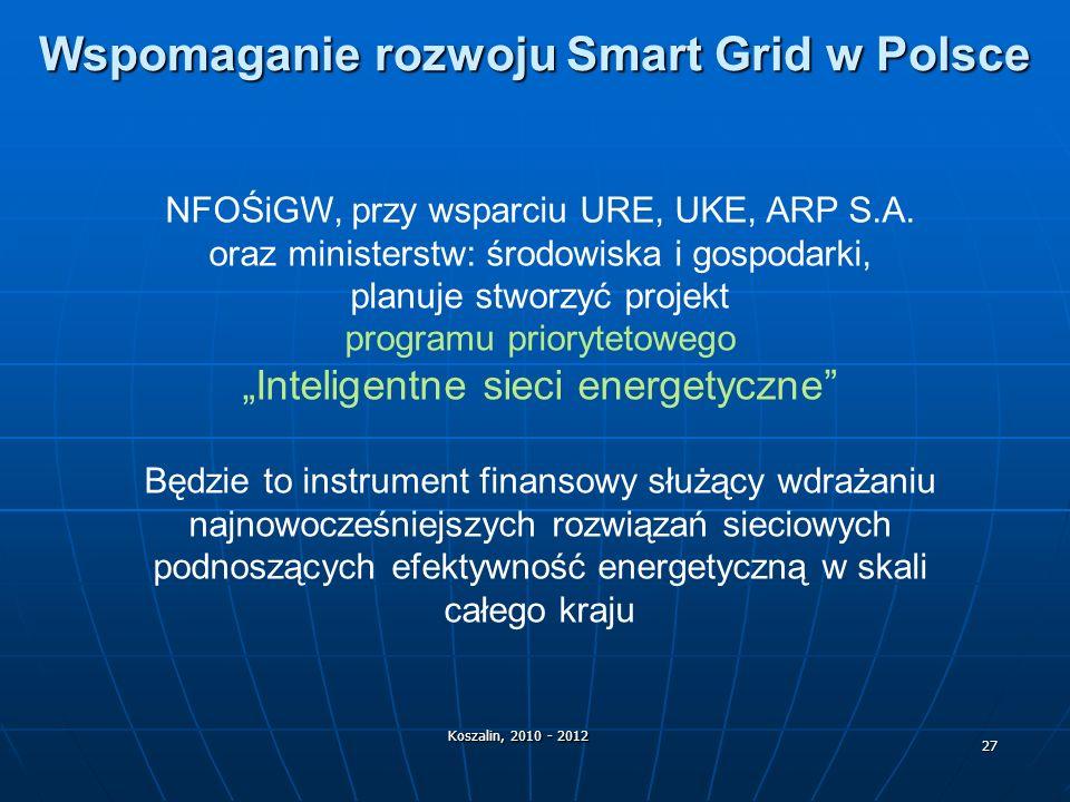 Wspomaganie rozwoju Smart Grid w Polsce