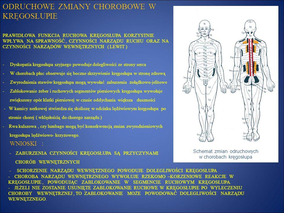 Schemat zmian odruchowych w chorobach kręgosłupa