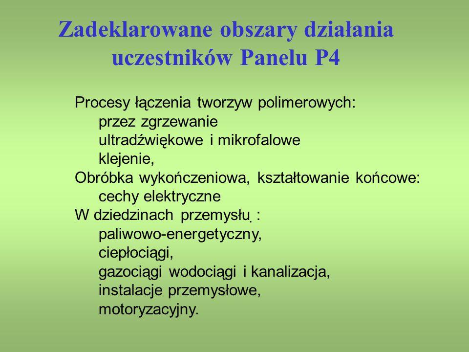 Zadeklarowane obszary działania uczestników Panelu P4