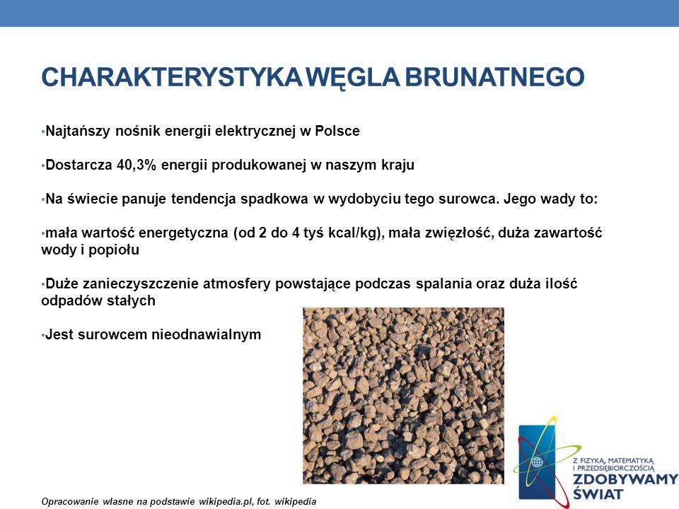 Charakterystyka węgla Brunatnego