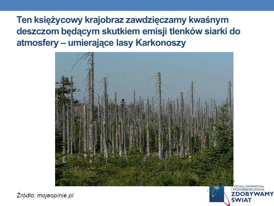 Ten księżycowy krajobraz zawdzięczamy kwaśnym deszczom będącym skutkiem emisji tlenków siarki do atmosfery – umierające lasy Karkonoszy