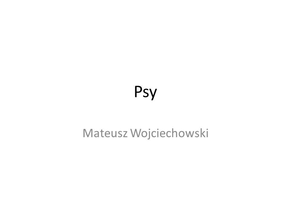 Mateusz Wojciechowski
