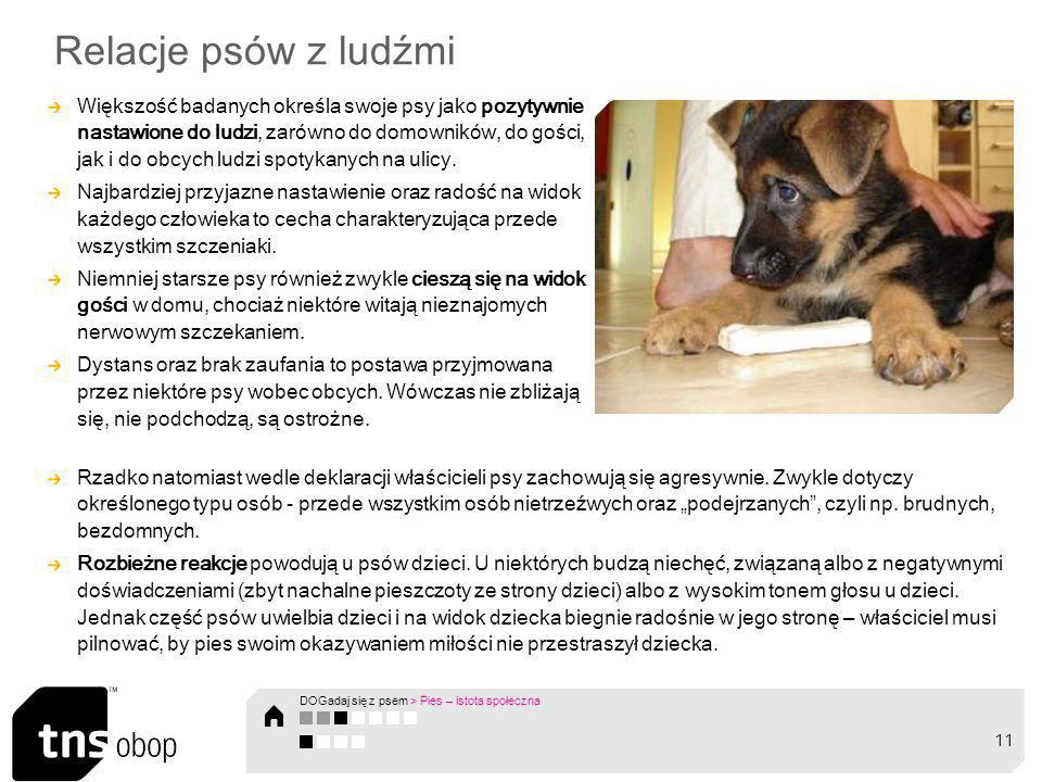 Relacje psów z ludźmi