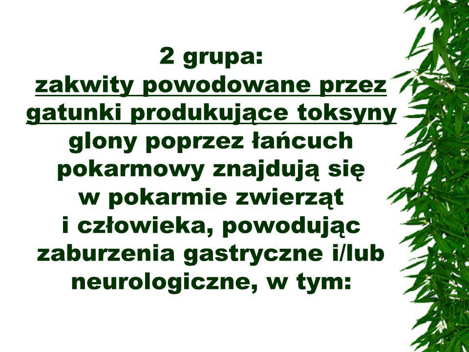 2 grupa: zakwity powodowane przez gatunki produkujące toksyny glony poprzez łańcuch pokarmowy znajdują się w pokarmie zwierząt i człowieka, powodując zaburzenia gastryczne i/lub neurologiczne, w tym: