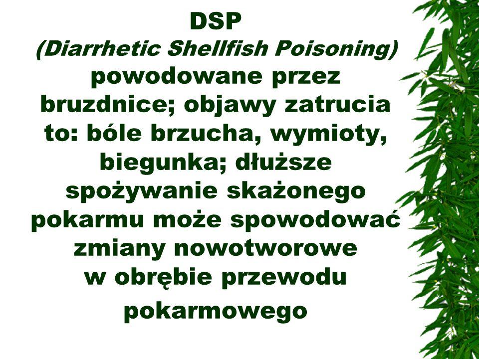 DSP (Diarrhetic Shellfish Poisoning) powodowane przez bruzdnice; objawy zatrucia to: bóle brzucha, wymioty, biegunka; dłuższe spożywanie skażonego pokarmu może spowodować zmiany nowotworowe w obrębie przewodu pokarmowego