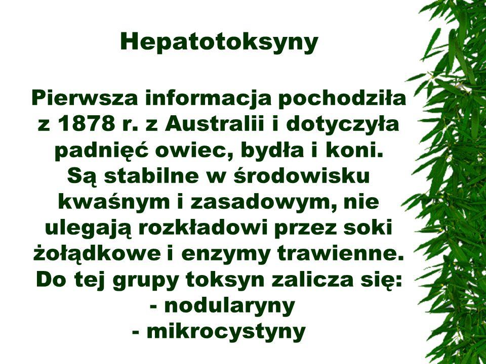 Hepatotoksyny Pierwsza informacja pochodziła z 1878 r