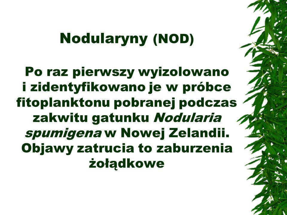 Nodularyny (NOD) Po raz pierwszy wyizolowano i zidentyfikowano je w próbce fitoplanktonu pobranej podczas zakwitu gatunku Nodularia spumigena w Nowej Zelandii.
