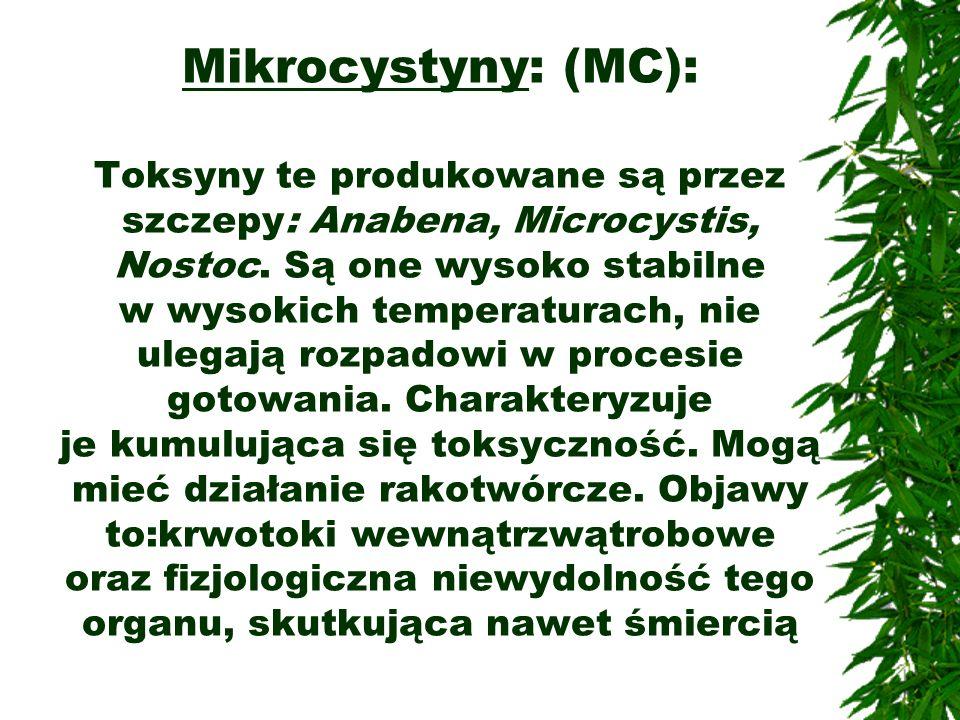 Mikrocystyny: (MC): Toksyny te produkowane są przez szczepy: Anabena, Microcystis, Nostoc.