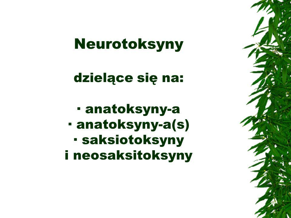 Neurotoksyny dzielące się na: · anatoksyny-a · anatoksyny-a(s) · saksiotoksyny i neosaksitoksyny