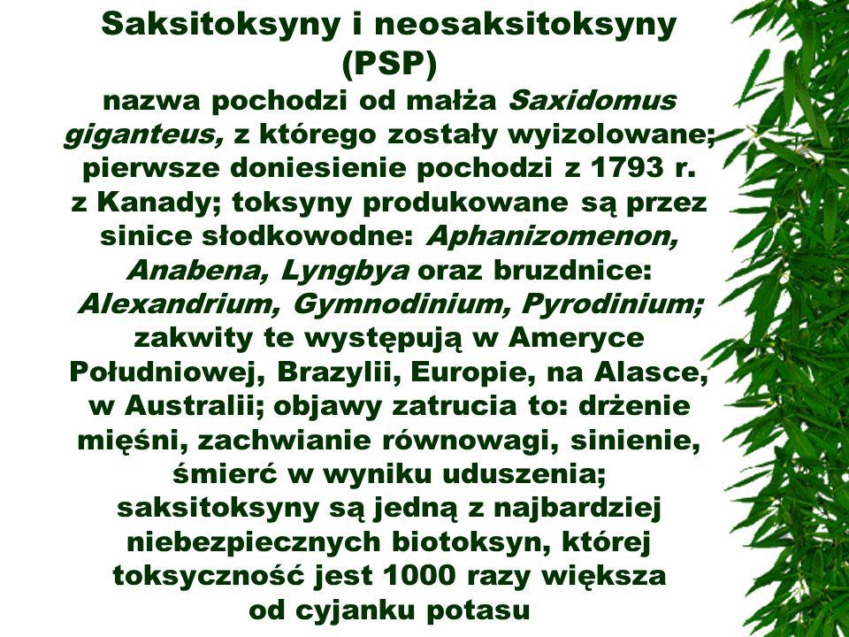 Saksitoksyny i neosaksitoksyny (PSP) nazwa pochodzi od małża Saxidomus giganteus, z którego zostały wyizolowane; pierwsze doniesienie pochodzi z 1793 r.