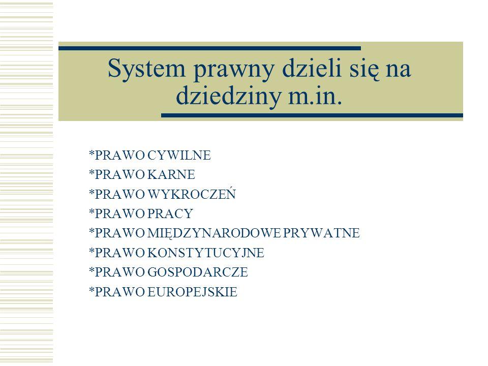 System prawny dzieli się na dziedziny m.in.