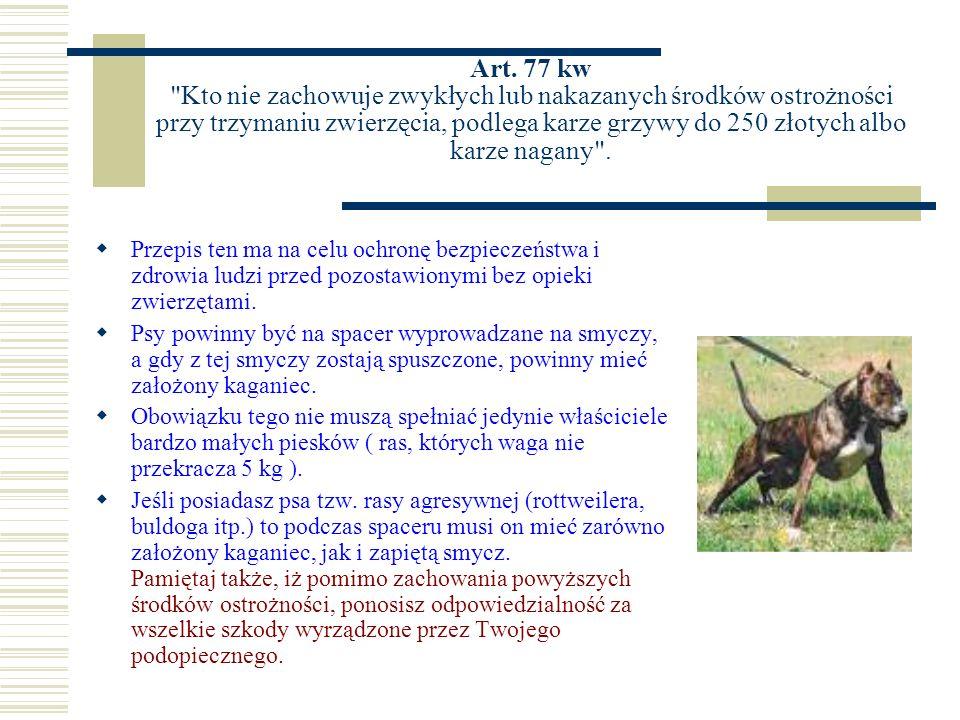 Art. 77 kw Kto nie zachowuje zwykłych lub nakazanych środków ostrożności przy trzymaniu zwierzęcia, podlega karze grzywy do 250 złotych albo karze nagany .