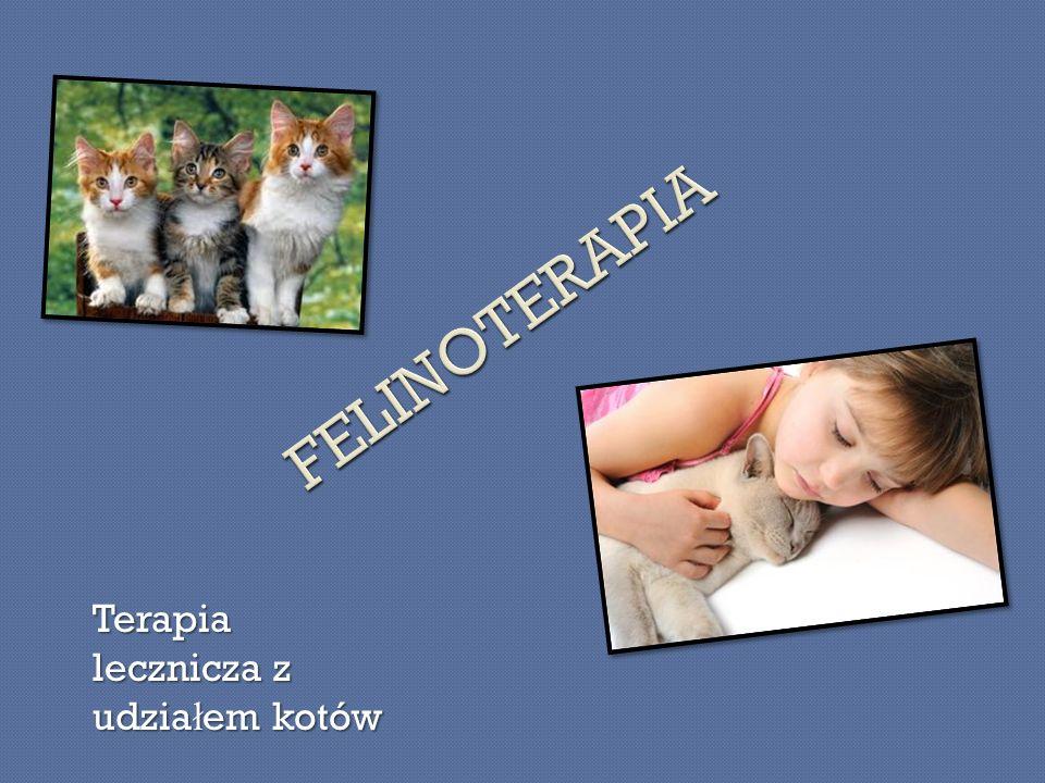 FELINOTERAPIA Terapia lecznicza z udziałem kotów