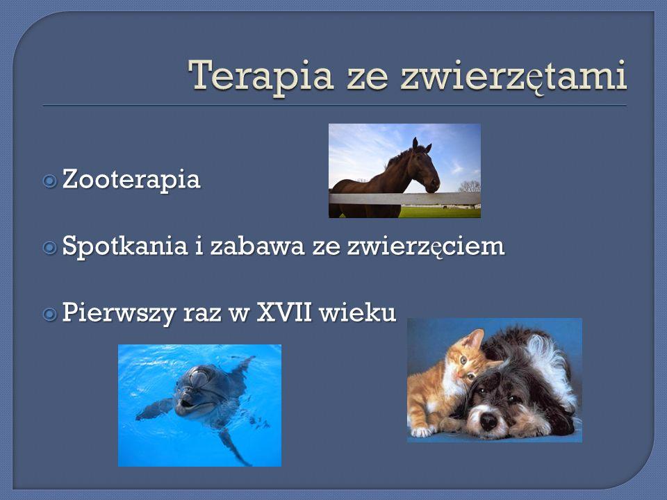 Terapia ze zwierzętami