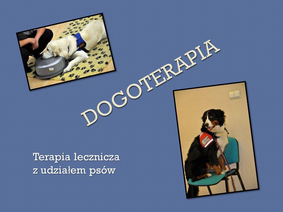 DOGOTERAPIA Terapia lecznicza z udziałem psów