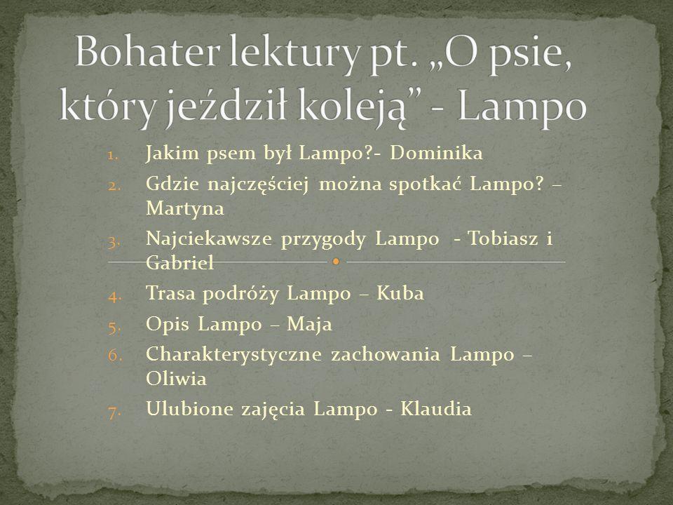 """Bohater lektury pt. """"O psie, który jeździł koleją - Lampo"""