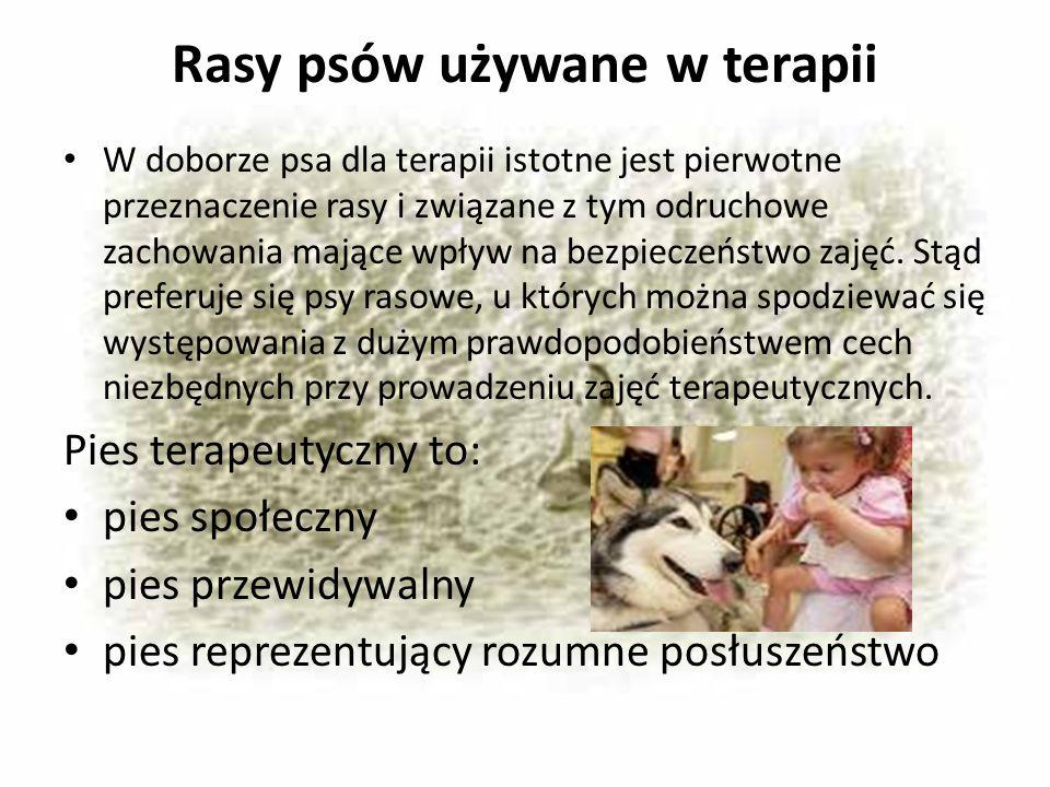 Rasy psów używane w terapii