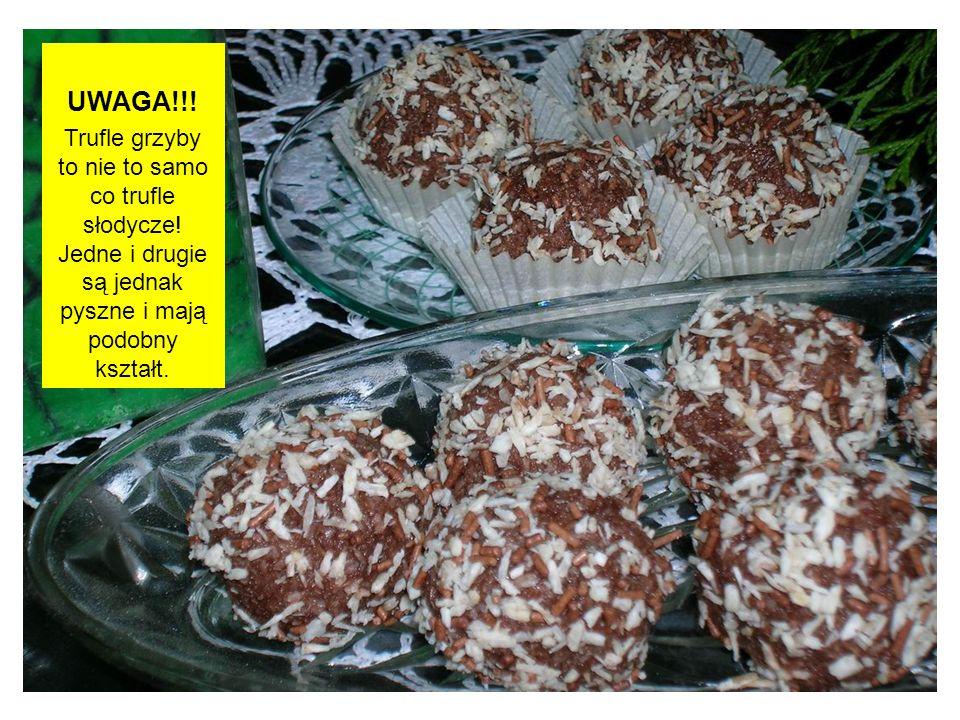 UWAGA!!. Trufle grzyby to nie to samo co trufle słodycze.