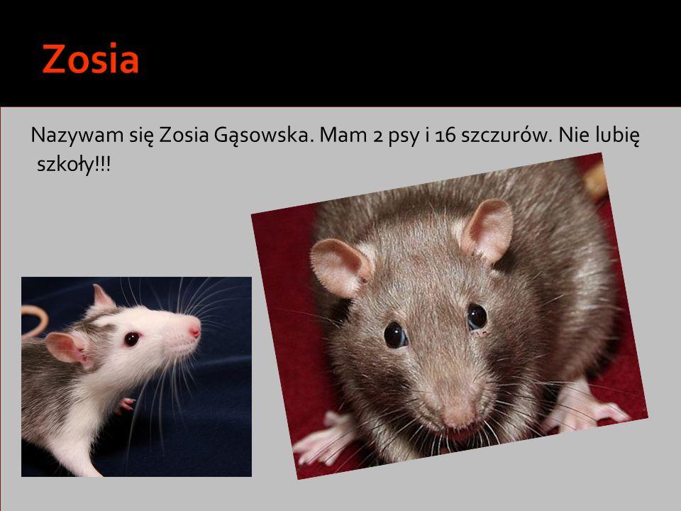 Zosia Nazywam się Zosia Gąsowska. Mam 2 psy i 16 szczurów. Nie lubię szkoły!!!