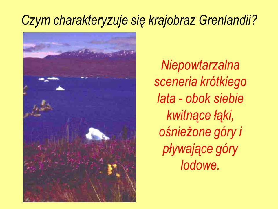 Czym charakteryzuje się krajobraz Grenlandii