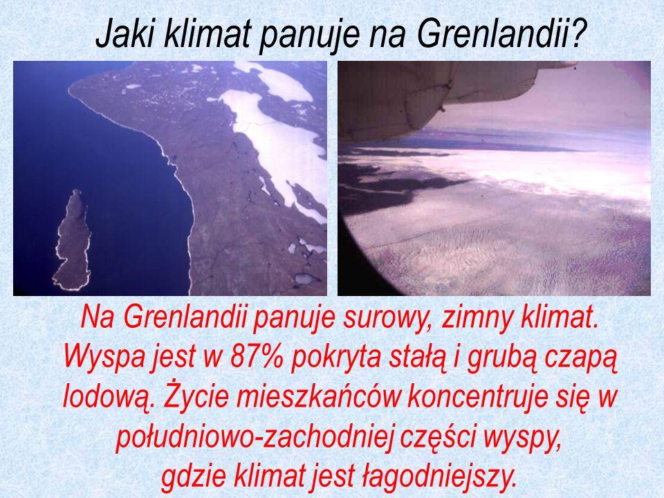 Jaki klimat panuje na Grenlandii