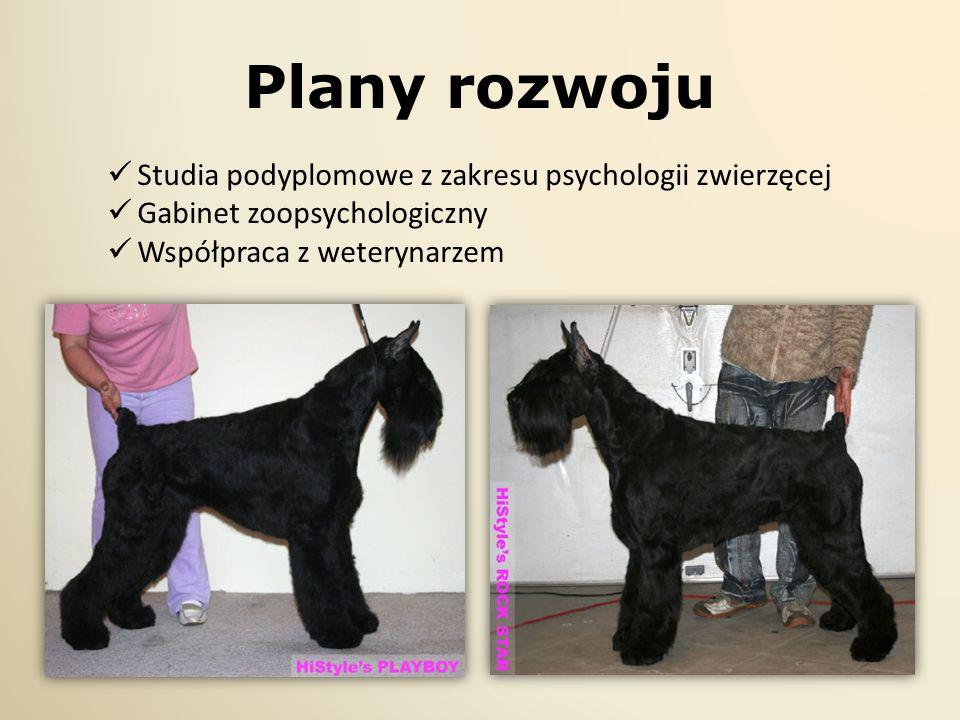 Plany rozwoju Studia podyplomowe z zakresu psychologii zwierzęcej