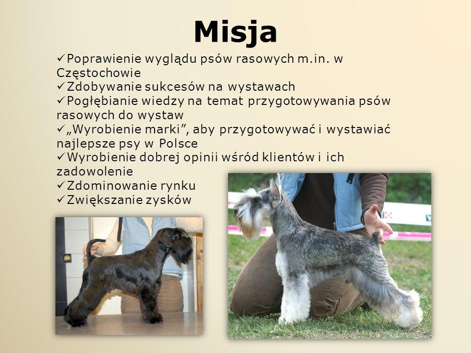 Misja Poprawienie wyglądu psów rasowych m.in. w Częstochowie