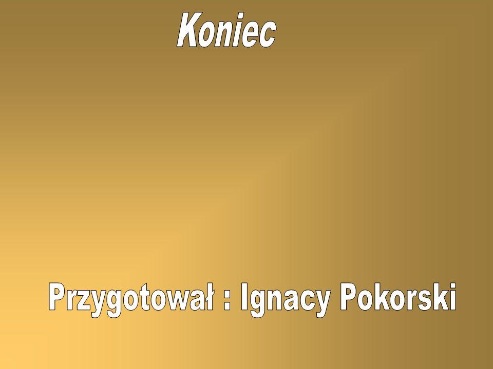 Przygotował : Ignacy Pokorski