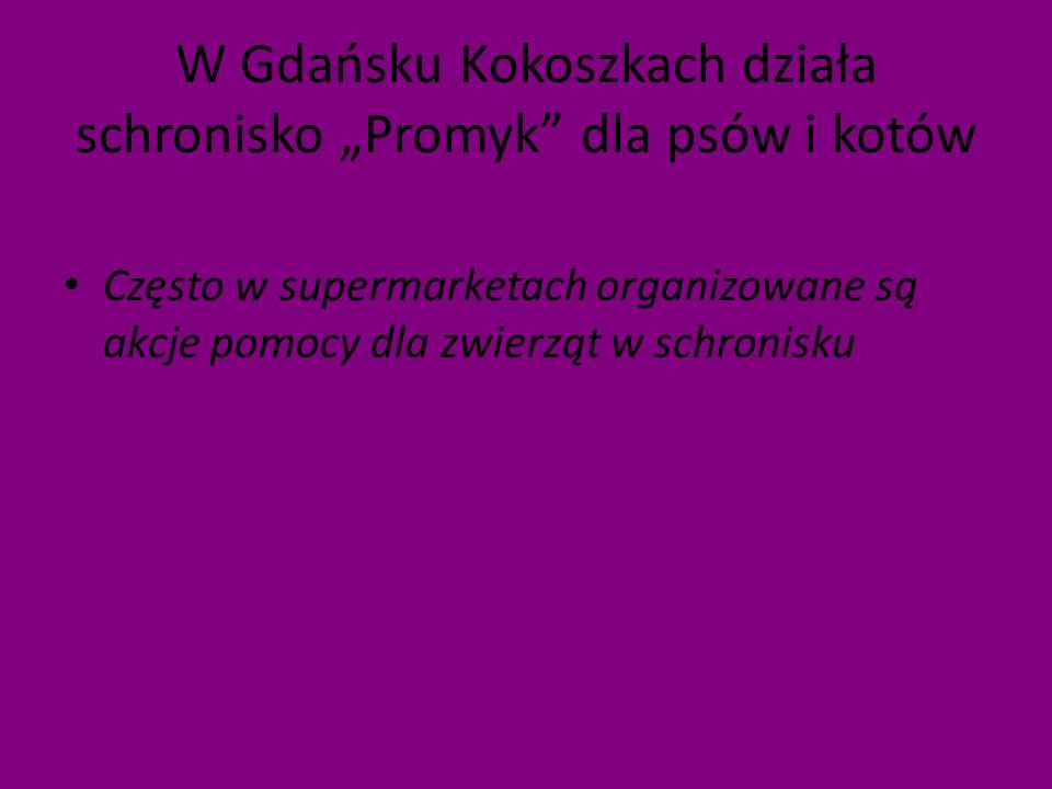 """W Gdańsku Kokoszkach działa schronisko """"Promyk dla psów i kotów"""