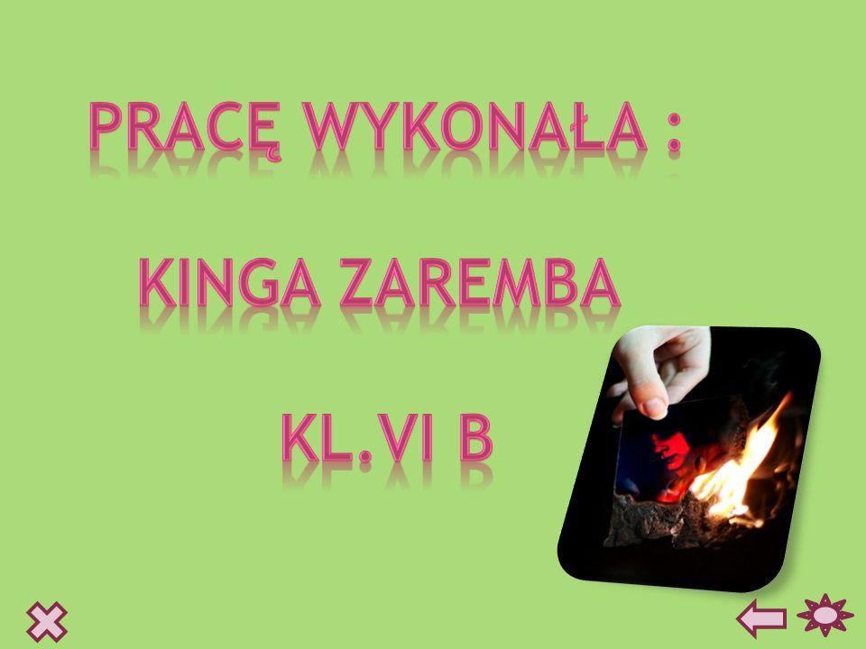 PRACĘ WYKONAŁA : KINGA ZAREMBA KL.VI b