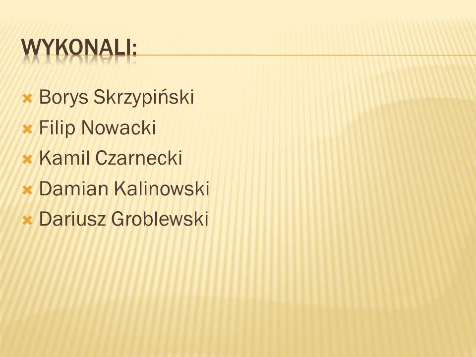WYKONALI: Borys Skrzypiński Filip Nowacki Kamil Czarnecki