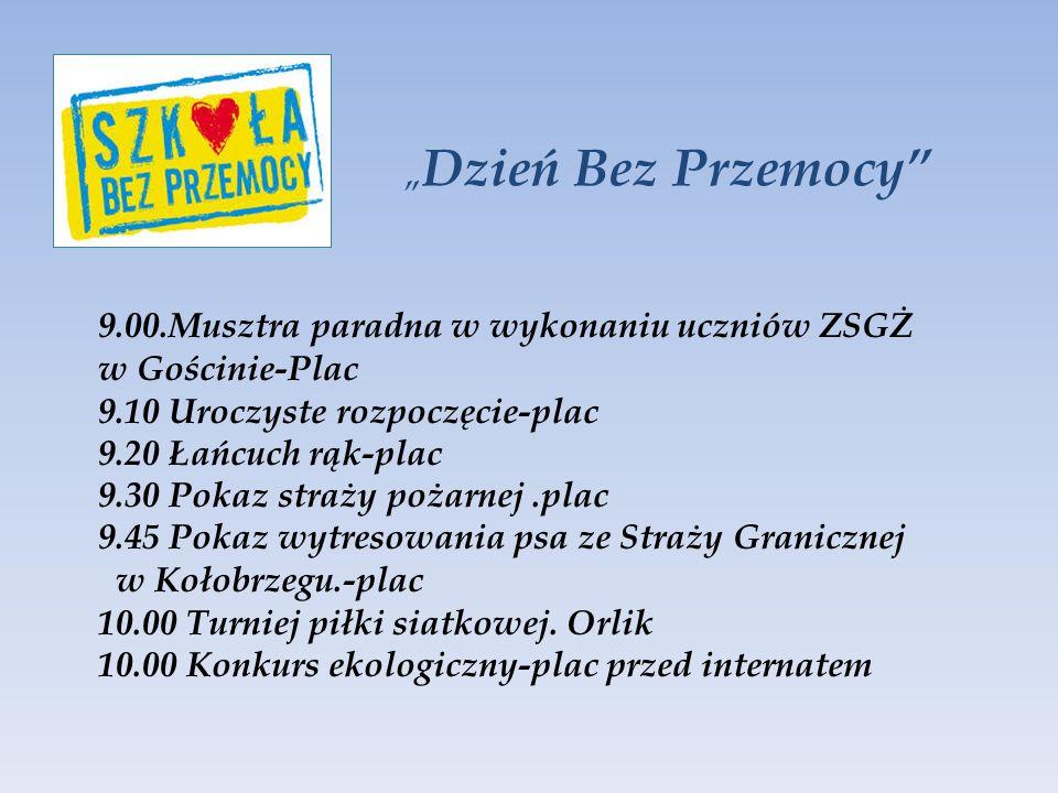 9.00.Musztra paradna w wykonaniu uczniów ZSGŻ w Gościnie-Plac