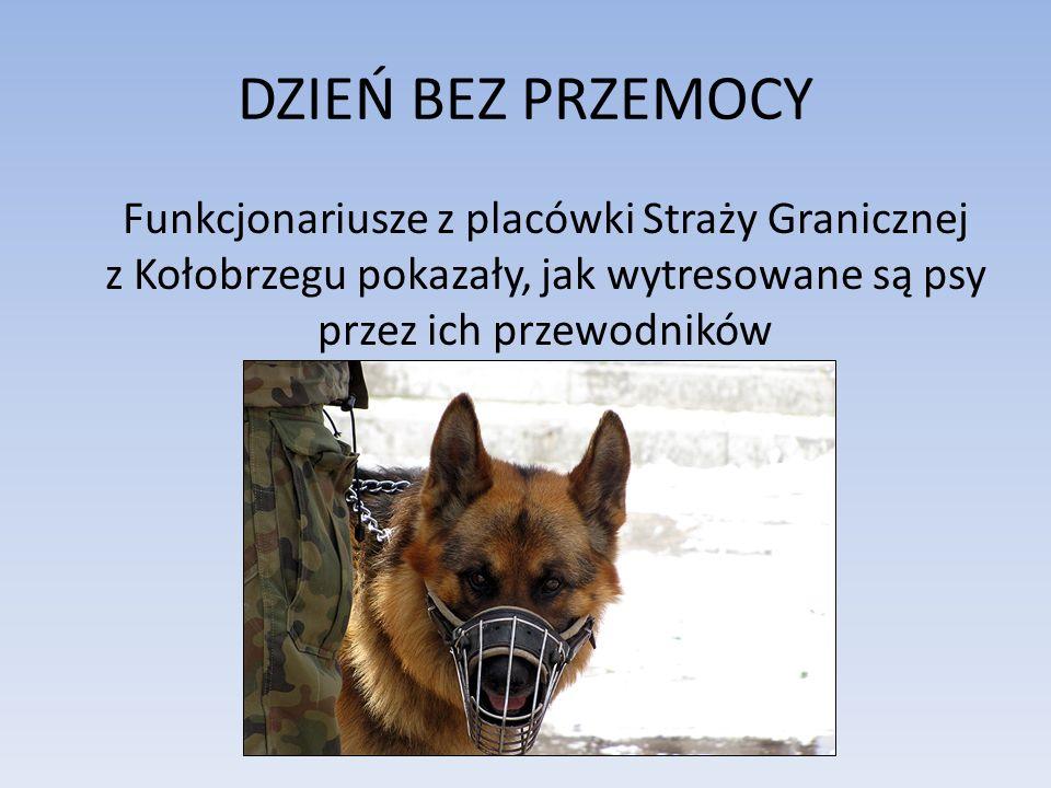 DZIEŃ BEZ PRZEMOCY Funkcjonariusze z placówki Straży Granicznej z Kołobrzegu pokazały, jak wytresowane są psy przez ich przewodników.